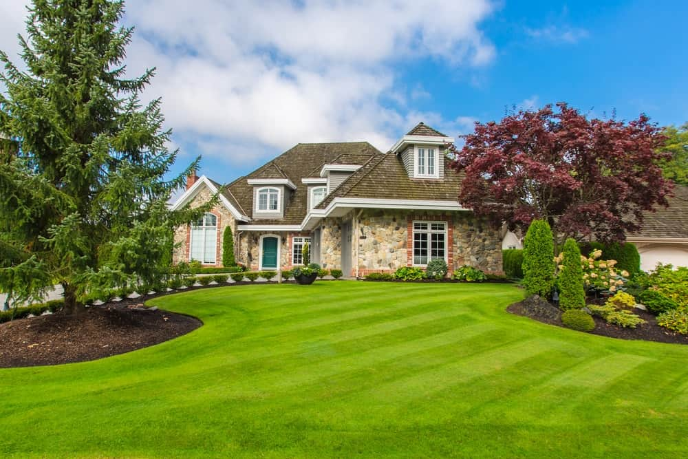 Big Lawn Care Mistakes Killing Your Grass